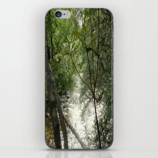 Gordon - Frankin Rivers iPhone & iPod Skin