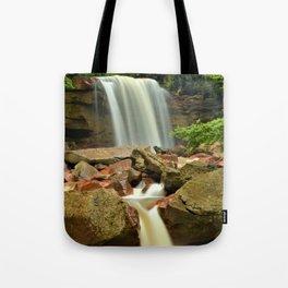 Douglas Falls Tote Bag