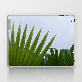 Tropical Palm Fan Laptop & iPad Skin