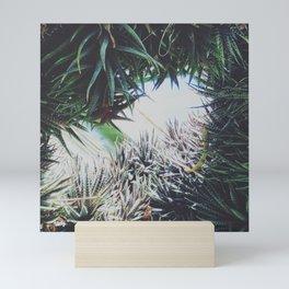 Enclosed Mini Art Print