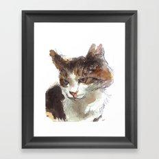 cat 013 Framed Art Print