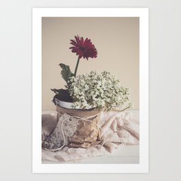 Soft Red Daisy Art Print