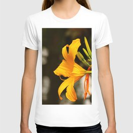Daylily Portrait T-shirt