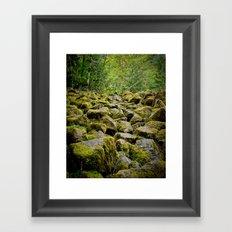 Oregon Path Framed Art Print
