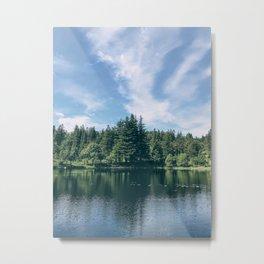 Bergen Forest Metal Print