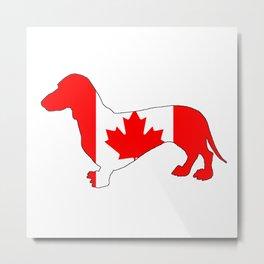 Canada Dachshund Metal Print