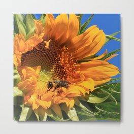 Sunny Bee Metal Print