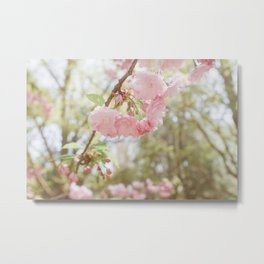 Spring is here Metal Print