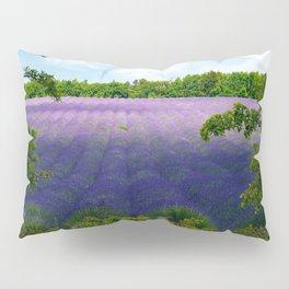 Summertime Lavender Pillow Sham