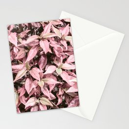 #Pink Foliage #nature #abstract Stationery Cards