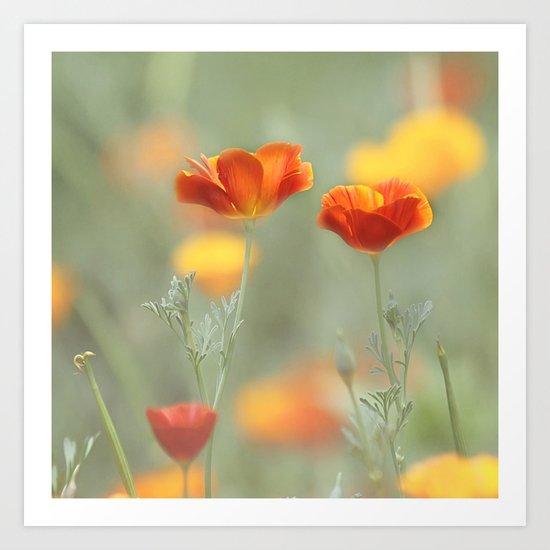 Vibrant Orange Art Print