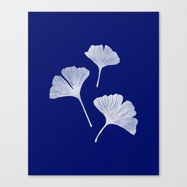 Ginkgo Biloba | Blue Background Canvas Print