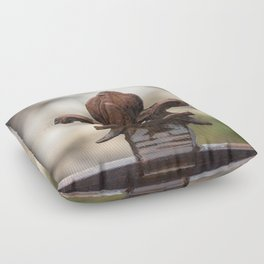 Fluer De Lis - Iron Fluer De Lis with Raindrops in New Orleans French Quarter Floor Pillow