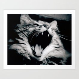 The Roar Art Print