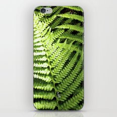 Fern Dell iPhone & iPod Skin