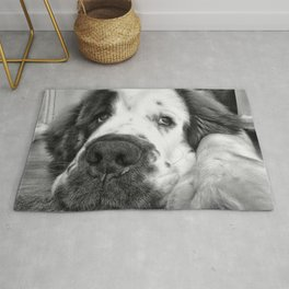 Black and white Beautiful Saint Bernard puppy relaxing Rug
