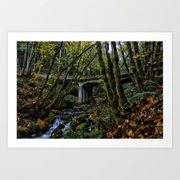 Chuckanut Drive Bridge Art Print