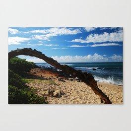 Beach on Maui Canvas Print