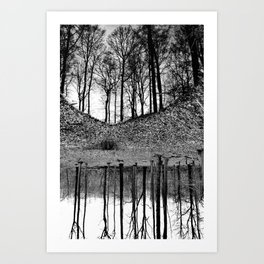 Reflection in the Wood 2 Art Print