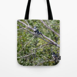 Two 4 One - Belted Kingfisher Tote Bag