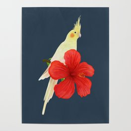 Lutino Cockatiel Poster