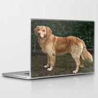 golden retriever Laptop & iPad Skins featuring Golden Retriever by Hyperhamster