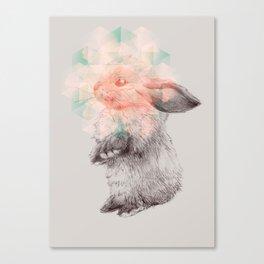 Techno-bunny Canvas Print