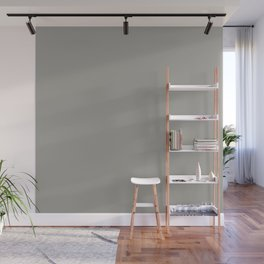 Drizzle Grey | Solid COlour Wall Mural