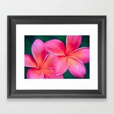 Aloha Hawaii Kalama O Nei Pink Tropical Plumeria Framed Art Print
