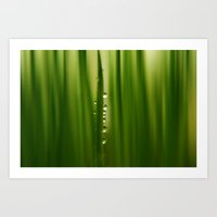 grass Art Prints featuring grass by Ingrid Beddoes