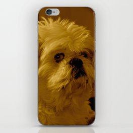 """Denali"" - Lap Dog iPhone Skin"