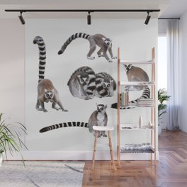 Ring-tailed lemur Wall Mural