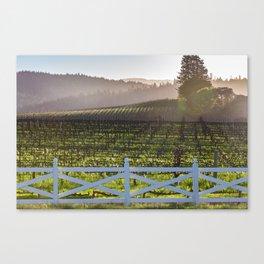 Anderson Valley Vineyard Canvas Print
