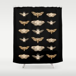 insects in gold - moths and beetles Shower Curtain