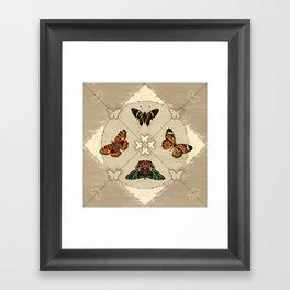 Butterfly Code Framed Art Print