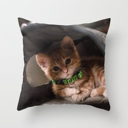 Leo Mar Suerte in his home. Throw Pillow