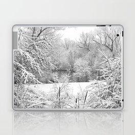 Winter Snow At Huron River Laptop & iPad Skin