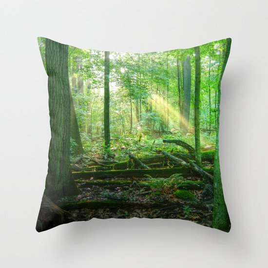 Devil's Lake State Park Throw Pillow