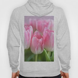 Bright pastel Pink dutch tulips, flowers, botanical, close-up - mother'sday floral - Hoody