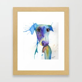 Chase (the Italian Greyhound) Framed Art Print