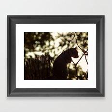 Squirrel Silhouette Framed Art Print