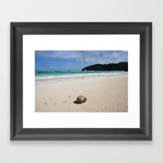 The Coconut Nut is a Giant Nut - beach view Framed Art Print
