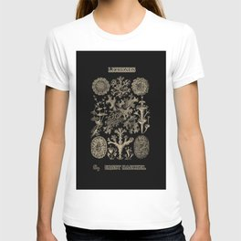 """""""Lichenes"""" from """"Art Forms of Nature"""" by Ernst Haeckel T-shirt"""