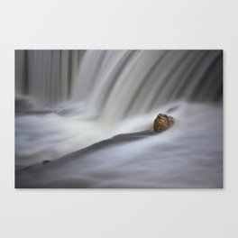 Waterfalls - Elora, Ontario Canvas Print