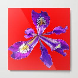AMETHYST  PURPLE DUTCH IRIS FLOWER ON RED DESIGN Metal Print