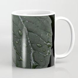 Botanical Still Life Photography Drops On Leaf Coffee Mug