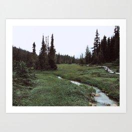 green meadows and brooks Art Print