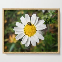 Magic Field Summer Grass - Chamomile Flower with Bug - Macro Serving Tray
