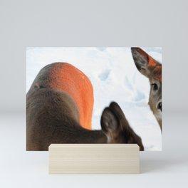 White Tail Deer (3 of 3) - SUNKISSED Mini Art Print