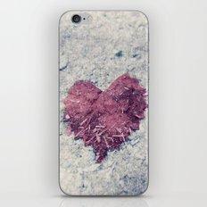 Love is ..... Everywhere. iPhone & iPod Skin